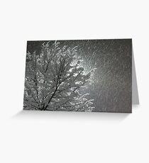 Snowy Night Lights Greeting Card