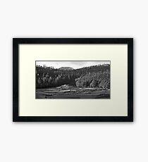 Tasmanian Meadow Framed Print