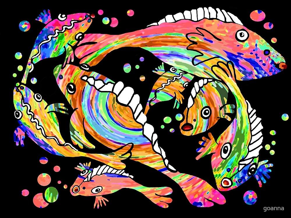 Rainbow fish by goanna