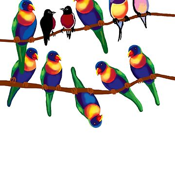 Party birds by goanna