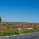 On the road to somewhere. South Australia. by johnrf
