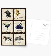 Fantastical Creatures Postcards