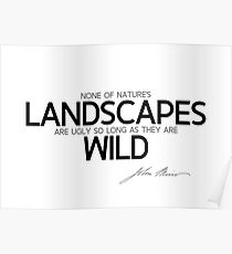 landscapes are wild - john muir Poster