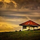 Hut in Colour... by Tracie Louise