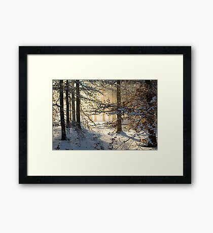 Filtering through  Framed Print