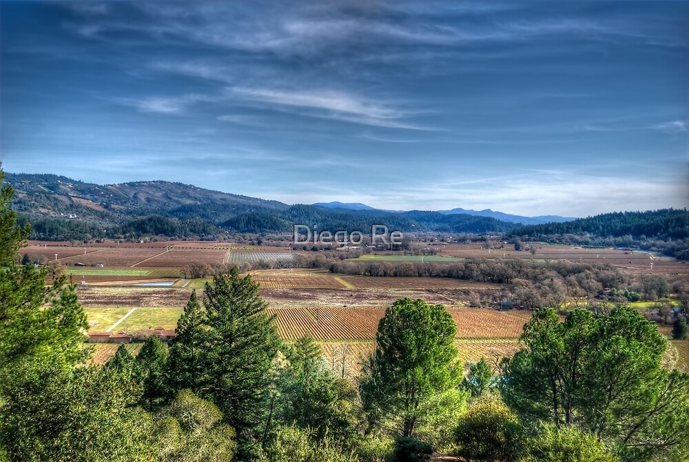 Napa Valley by Diego Re