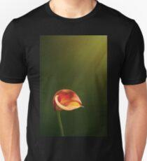 Lightcatcher T-Shirt