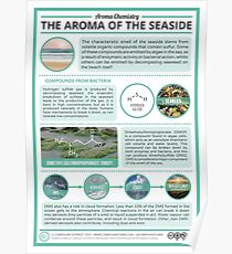 The Aroma of the Sea Poster