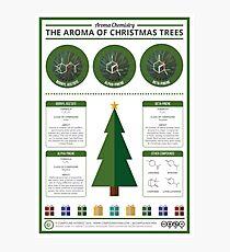 The Aroma of Christmas Trees Photographic Print
