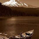 Postcards From Oregon ~ Part One by artisandelimage