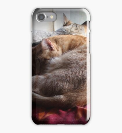 ..Ludo and Sally iPhone Case/Skin