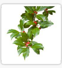 Christmas Holly Sticker