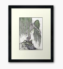 Old Lady Willow Framed Print