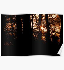 Gloaming Poster