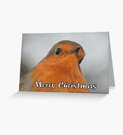 Merry Christmas - Robin Greeting Card