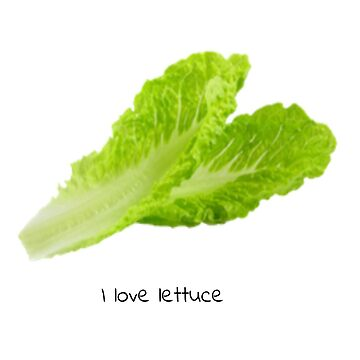 i love lettuce by supercell734