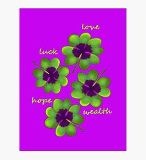 Four leaf clover Photographic Print