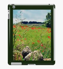 Tranquil Lanscape iPad Case/Skin
