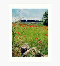 Tranquil Lanscape Art Print