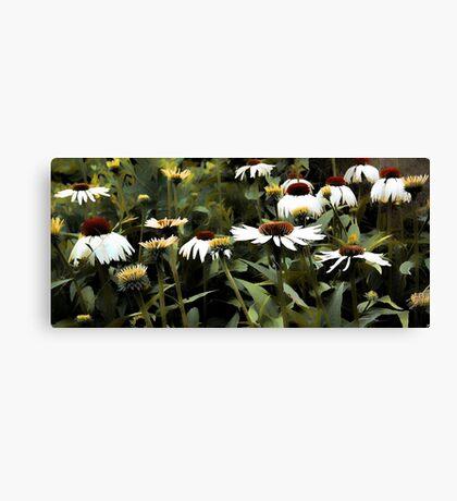 White Swan - Coneflower Canvas Print
