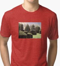 Dawn In A Topiary Garden Tri-blend T-Shirt