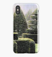 Dawn In A Topiary Garden iPhone Case
