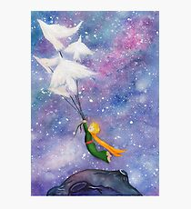 The Little Prince Birds Photographic Print