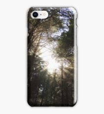 Wondrously In the Morning iPhone Case/Skin