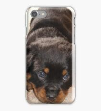 Cute Rottweiler Puppy With Head On Paws iPhone Case/Skin