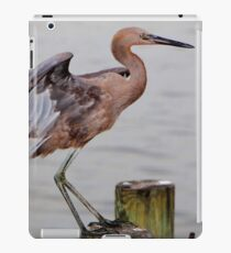 Egret Egress iPad Case/Skin