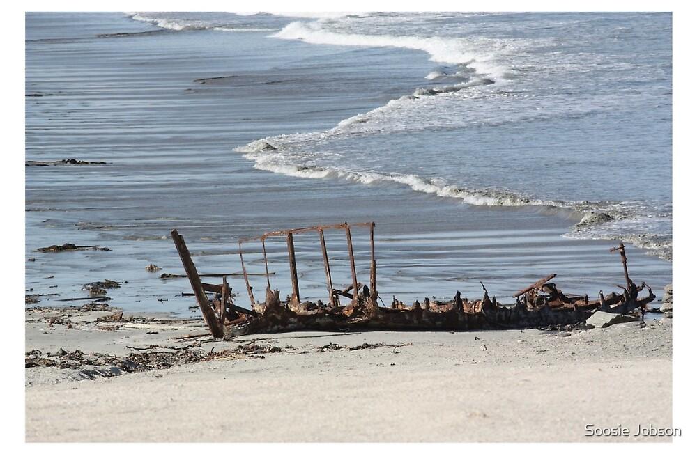 Shipwreck Coast Namibia by Soosie Jobson