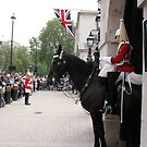 Horse Guards by Denzil