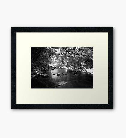 Freshwater Creek Framed Print