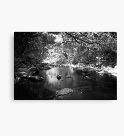 Freshwater Creek Canvas Print