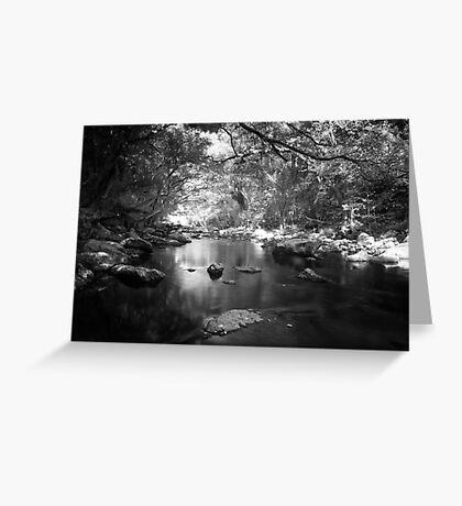 Freshwater Creek Greeting Card