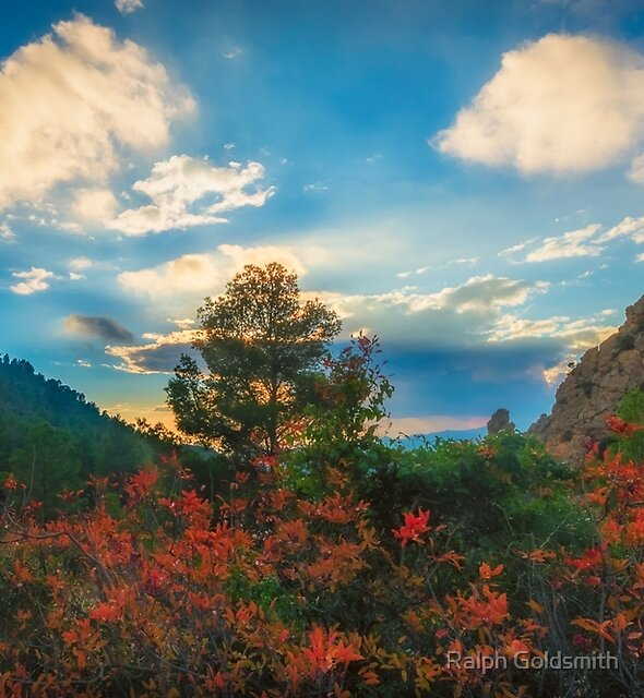 Red leaves trees and cliffs by Ralph Goldsmith