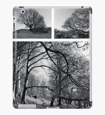 """The best time to plant a tree was 20 years ago.  The next best time is now."" Chinese Proverb iPad Case/Skin"