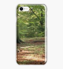 Tranquil Spaces iPhone Case/Skin