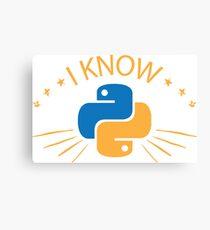 Python Programmer. Gift for Progrogammer Canvas Print