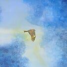 Yokosuka - Hawk In Flight 2 by Beverly Claire Kaiya