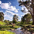 Little Creek by Leanne Robson