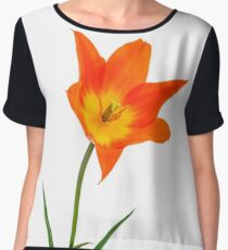 Beautiful orange  tulip Women's Chiffon Top
