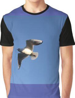 Little Gull In Flight Graphic T-Shirt