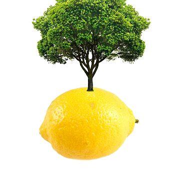 Lemon Tree  by iansoca