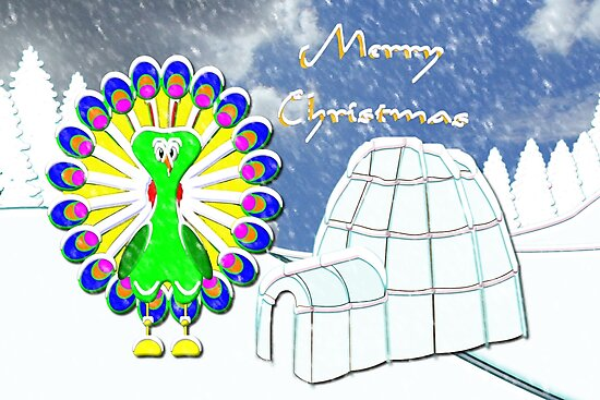 A Chilly Peacock Wishes You a Merry Christmas by Dennis Melling