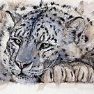 Resting Snow Leopard 778  by schukinart