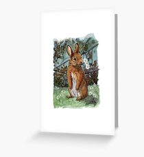 Funny Rabbits - Daisies for You 550 Greeting Card