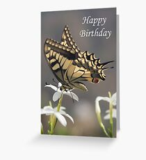 Swallowtail butterfly - Happy Birthday Greeting Card