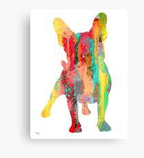 French Bulldog 9 Canvas Print