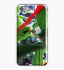 Plant Stalk iPhone Case/Skin